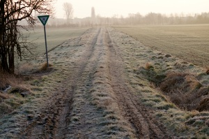 Wintermorgen im Naturschutzgebiet