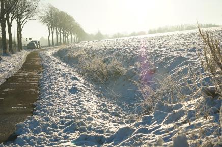 Radweg nach Hohenbostel