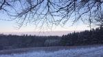 Wintermorgen am Waldrand (Rodelbahn)